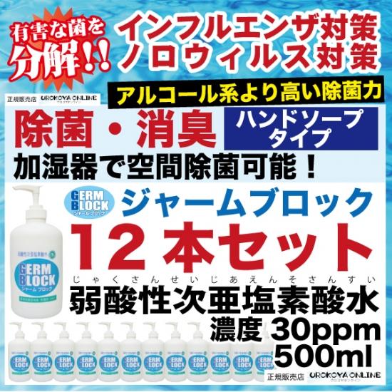 弱酸性次亜塩素酸水 ジャームブロック(そのまま使えるタイプ) ハンドソープタイプ 30ppm 500ml 12本入 ■保存期間:1年